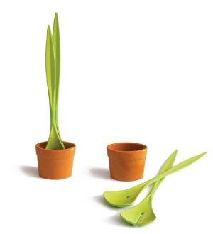 Couvert à salade plante