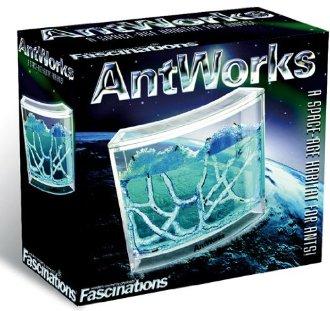 AntWorks Fourmilière