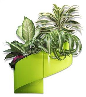 pot pour plante original et design. Black Bedroom Furniture Sets. Home Design Ideas
