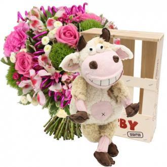 Bouquet + Peluche spécial naissance